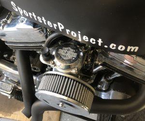 Sportster Carburetor
