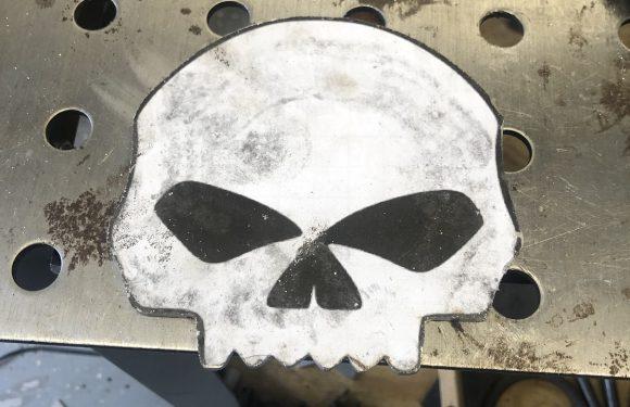 Skulls are cool…