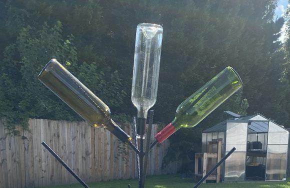 Wine Bottle Tree…